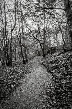 20171118_knypersley_010-HDR-Edit.jpg