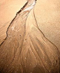 20100728_Shell-Island_015-Edit.jpg